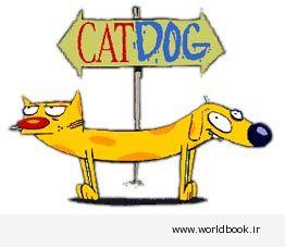 تصویر از دانلود کتاب آموزش انگلیسی English Cats and Dog  همراه با فایل صوتی