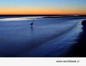 best-beaches-2011-siesta-beach_36208_600x450