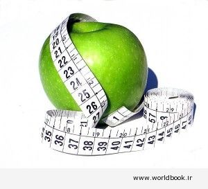 دانلود کتاب رژیم چاقی 1