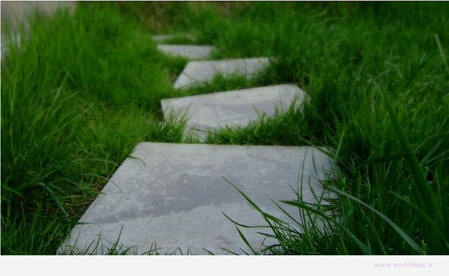 stepping-stones-moving-forward-worldbook